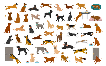 Différentes races de chiens et ensemble mixte, les animaux jouent à courir en sautant manger en dormant, asseyez-vous et marchez, volez de la nourriture, aboyez, protégez. graphique d'illustration de vecteur de dessin animé isolé Vecteurs