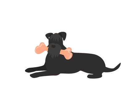dog eating a bone isolated vector graphic
