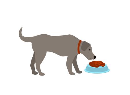 dog eating raw food meat cartoon isolated vector illustration scene
