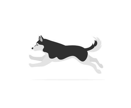 bieganie, skaczący, husky, odizolowany, wektor, ilustracja