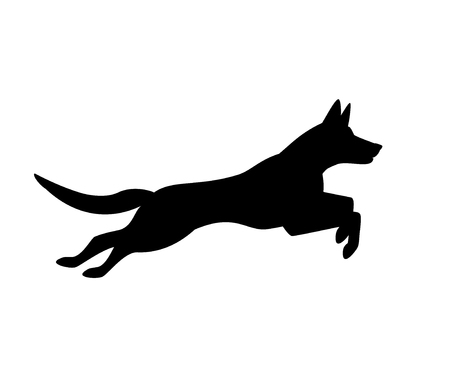 belgian malinois dog jumping running silhouette graphic