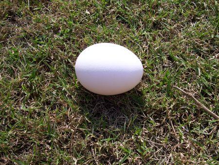 Egg on green grass Stock Photo