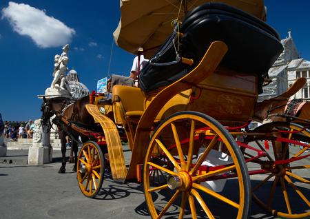 piazza dei miracoli: Carriage waiting in Piazza dei Miracoli, Pisa