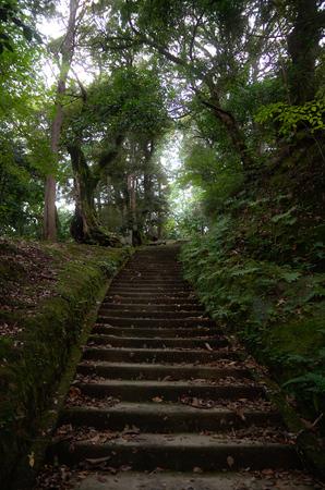 stone path: Japanese stone path inside a garden Stock Photo
