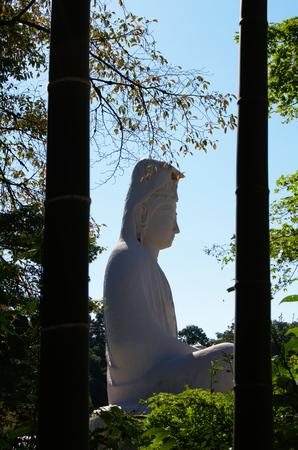 霊山観音プロファイル竹溝記念碑付近から撮影