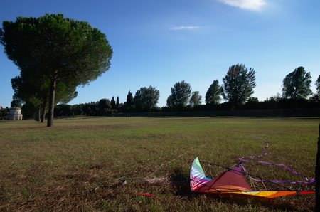 ravenna: Kite in the ground near Theoderics mausoleum, Ravenna, Italy