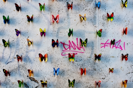 Mariposas de papel en una pared en Roma, Italia photo