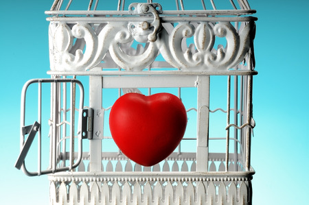 a red heart in a white cage photo