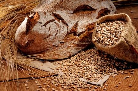 poele bois: Pain cro�t� fra�chement cuits, cuites dans un four � bois traditionnel Banque d'images
