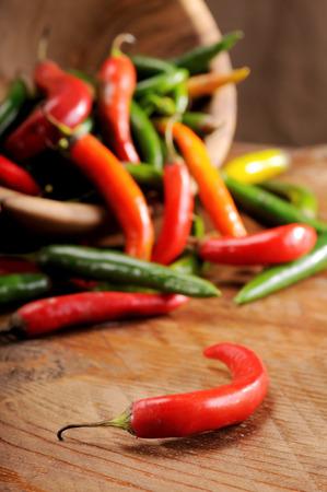 foglia: Una composizione di spezie ottimi per condire la cucina mediterranea Stock Photo
