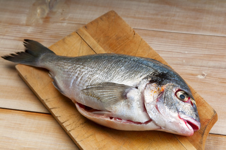 farmed: Sea bream, typical Mediterranean fish. Today are often farmed fish Stock Photo
