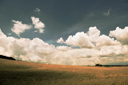 daunia: Panoramic mountain landscape in autumn Filtered image cross processed vintage effect Stock Photo