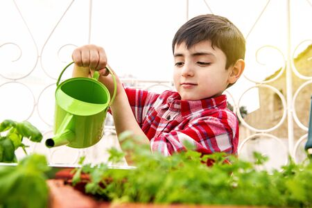 child outdoorswatering doing gardening activities