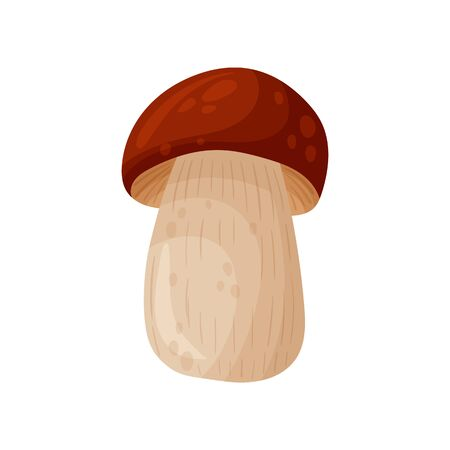 Colorful fresh autumn wild forest mushroom. Cartoon flat style silhouettes icons. Great autumn design concept elements. Vector illustration isolated on white background.
