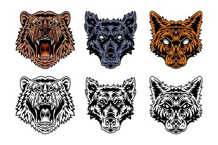 Animal face bear, wolf, fox vintage retro style. Vector illustration isolated on white background. Design element for  badge, tattoo, banner, poster. Illustration