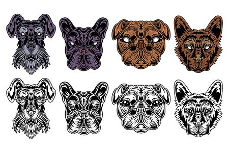 Dog face miniature schnauzer, french bulldog, pug, shepherd vintage retro style. Vector illustration isolated on white background. Design element for  badge, tattoo, banner, poster.