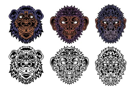 Animal face primate, gorilla, chimpanzee, monkey vintage retro style. Vector illustration isolated on white background. Design element for  badge, tattoo, banner, poster.