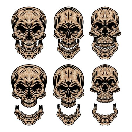 Set of Vintage retro human skull and jaw isolated vector illustration on a white background. Design element for badge, tattoo, banner, poster. Ilustrace