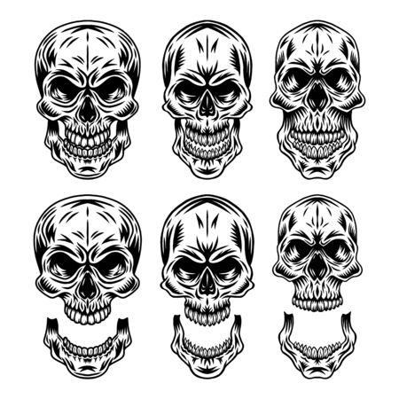 Set of Vintage retro human skull and jaw isolated vector illustration on a white background. Design element for  badge, tattoo, banner, poster. Reklamní fotografie - 133552268