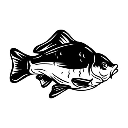 Vintage carp fish retro roasted coffee beans isolated vector illustration on a white background. Design element for logo, badge, banner, poster.