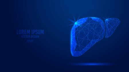 Liver human organ geometric lines, low polygon triangles style wireframe vector banner template. Isolated medicine science technology concept on a blue background polygonal 3d abstract. Ilustração