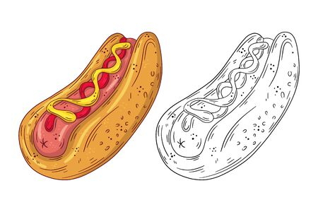 Hand drawn doodle fast food Hotdog. Vector illustration isolated on white background.