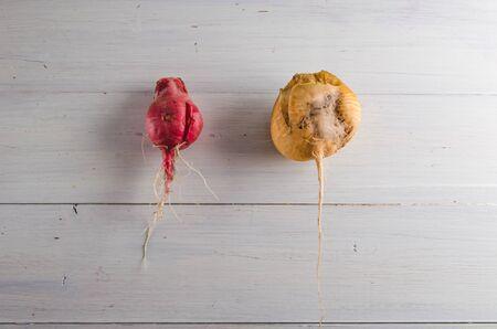 ugly radish food on a white background