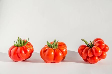 ugly tomatoes variety voyage on white background with copy space Фото со стока