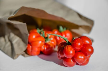 ugly tomatoes of the voyage variety in a paper bag