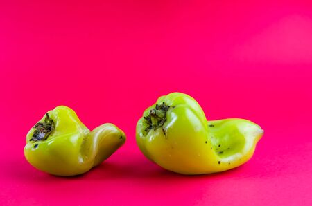 ugly food. green pepper on a red background. copy space
