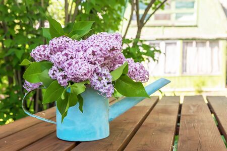 beautiful bouquet of lilacs in garden watering on the wooden table Standard-Bild