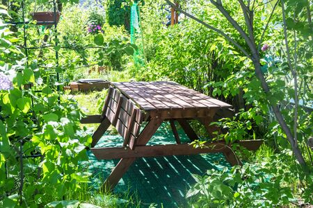 wooden table on the garden plot. sunlight Banque d'images