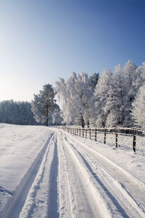 Winter scene with snowy road in early morning lights photo