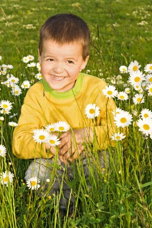 folwer: Little boy on the folwer field