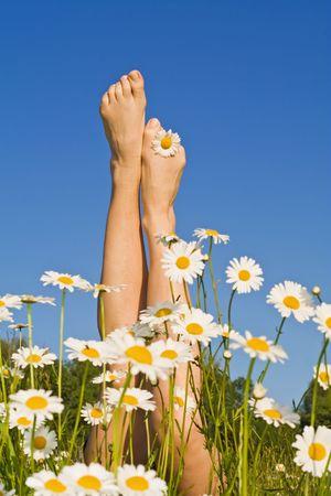 piernas mujer: Mujer piernas brotaci�n de un ramo de margaritas en primavera o verano sobre el terreno - contra el cielo azul