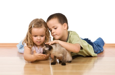 preoccupied: Kids laying on the floor caressing their kitten