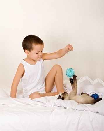 Little boy playing with kitten on the bed photo
