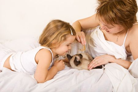 Little girl and woman playing with a kitten laying on the bed photo
