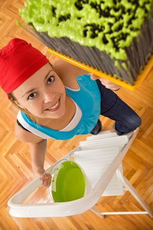 Happy smiling woman painting the ceiling green with a large brush - wide angle shot Stock Photo - 5339351