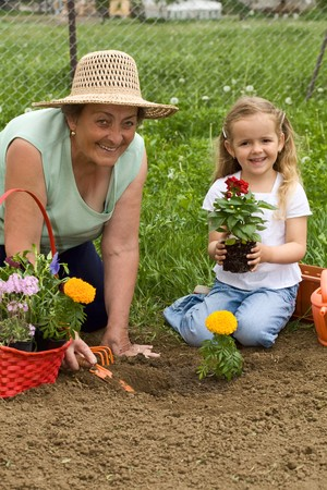 Grandmother teaching little girl gardening - planting a flower together