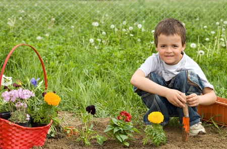 Young boy planting flowers in the garden photo