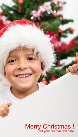 Happy boy wearing christmas hat holding blank sign with copy-space Stock Photo - 8114408