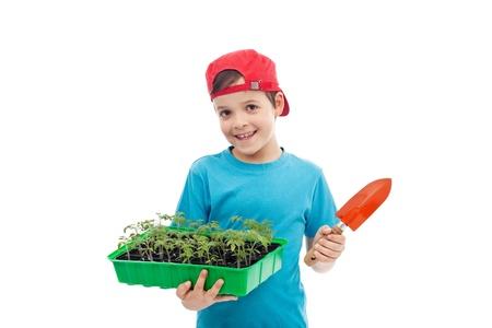 germinación: Muchacho sonriente con plántulas de tomate en una bandeja y una pala de jardinería pequeña - aislado Foto de archivo