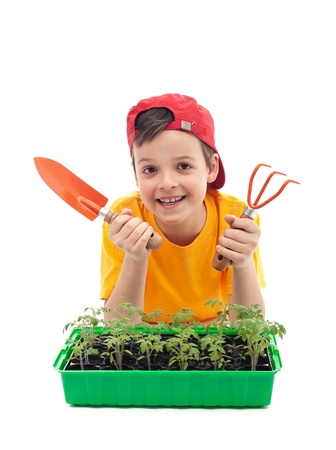 veggie tray: Young boy learning to grow food - with tomato seedlings and gardening utensils