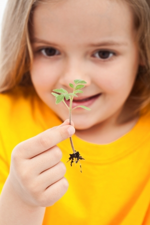 The wonder of life - little girl holding small seedling, closeup Stock Photo - 13629399