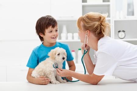 Niño feliz y su perro suave y esponjosa en el chequeo veterinario - se centran en mascotas Foto de archivo