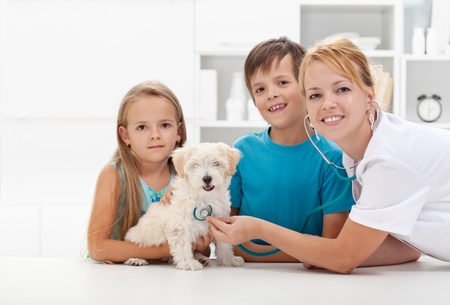veterinary care: Kids taking their fluffy pet to the veterinary doctor for a checkup - copyspace