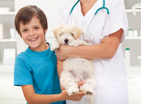 Boy and his beloved fluffy dog at the veterinary doctor office photo