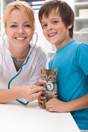 Boy and his kitten at the veterinary doctor office-focus on the cat photo