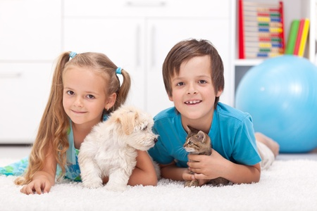 kitten small white: Happy kids with their pets - a dog and a kitten, laying on the floor